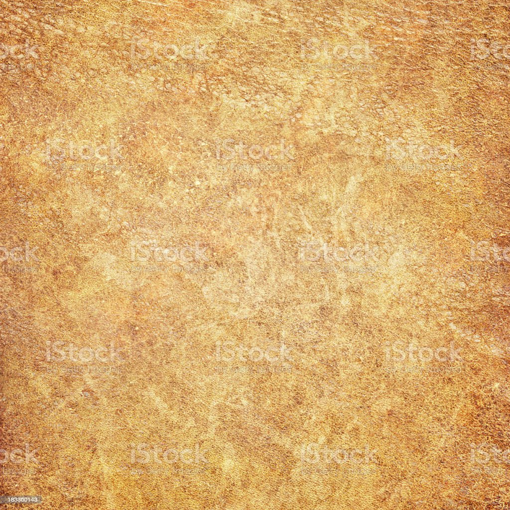 High Resolution Old Animal Skin Parchment (Vellum) Vignetted Grunge Texture royalty-free stock photo