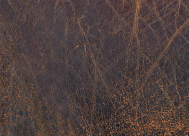 High Resolution Old Brown Cowhide Grunge Texture stock photo