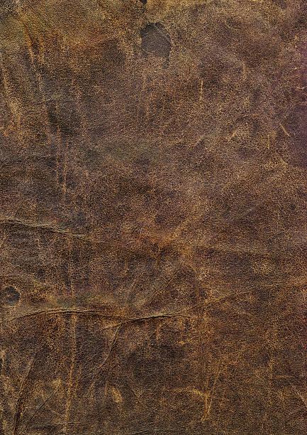 High Resolution Old Dark-brown Cowhide Crumpled Dappled Grunge Texture stock photo