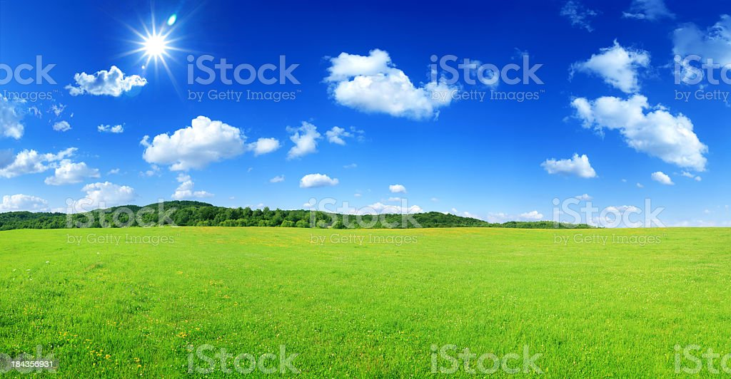 High Resolution Panoramic Landscape - Sunny Meadow royalty-free stock photo