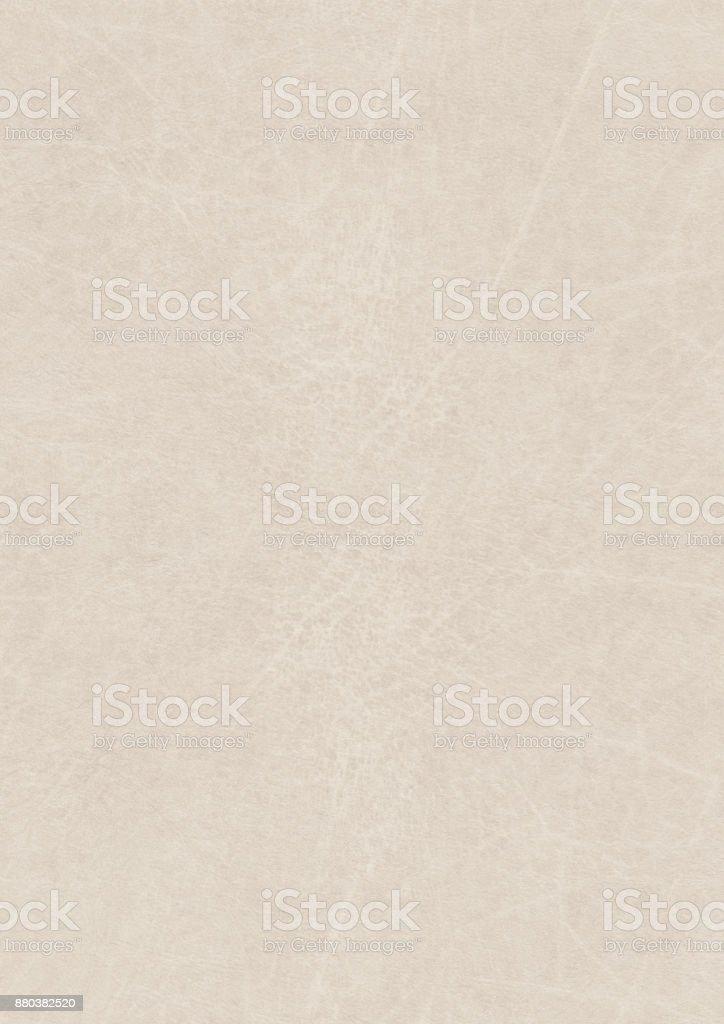 High Resolution Parchment Grunge Texture stock photo