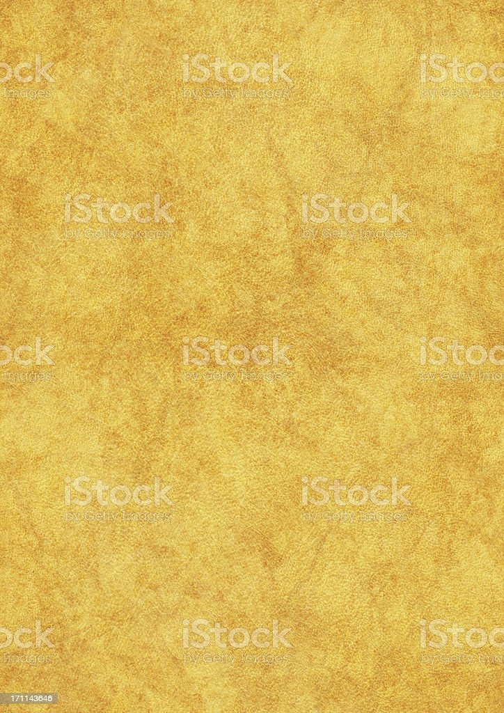 High Resolution Seamless Parchment (Vellum) Texture Tile stock photo