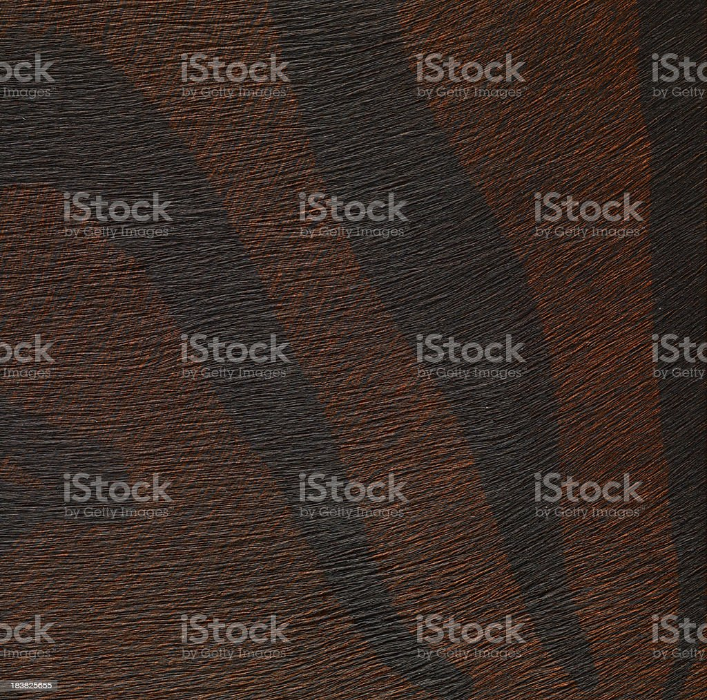 High resolution  wallpaper with animal pattern royalty-free stock photo
