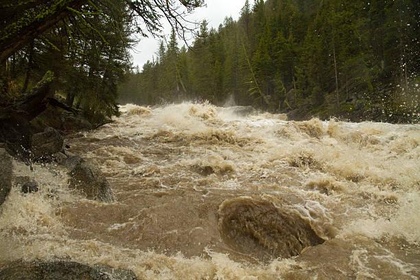 high river - jake*s stock-fotos und bilder