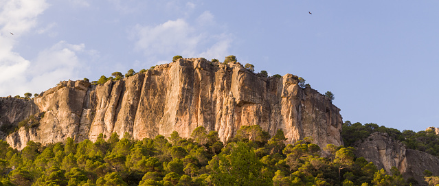 Scenic of a high rock mountain cliff covered by tress on a sunny day against a blue sky