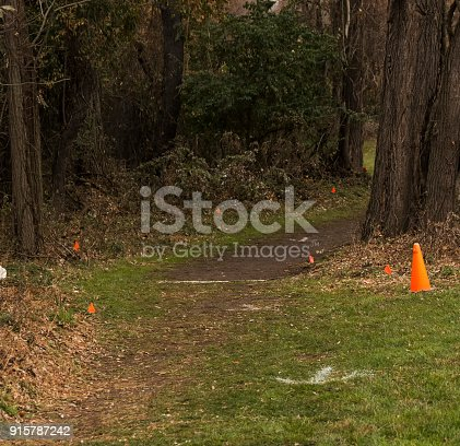 986840244istockphoto High school and college cross country course 915787242