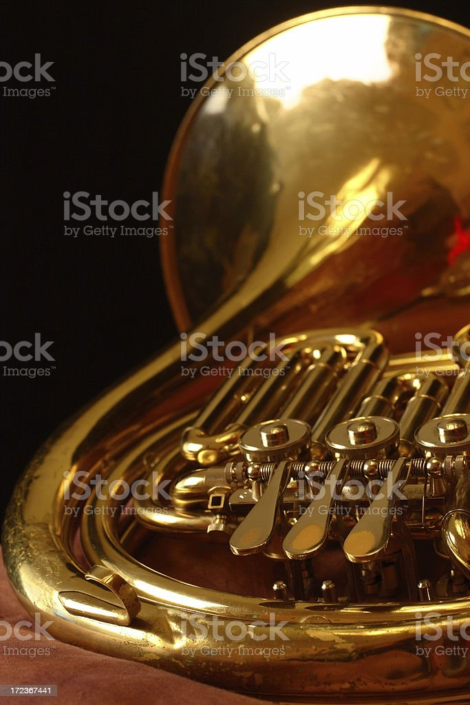 High School French Horn royalty-free stock photo