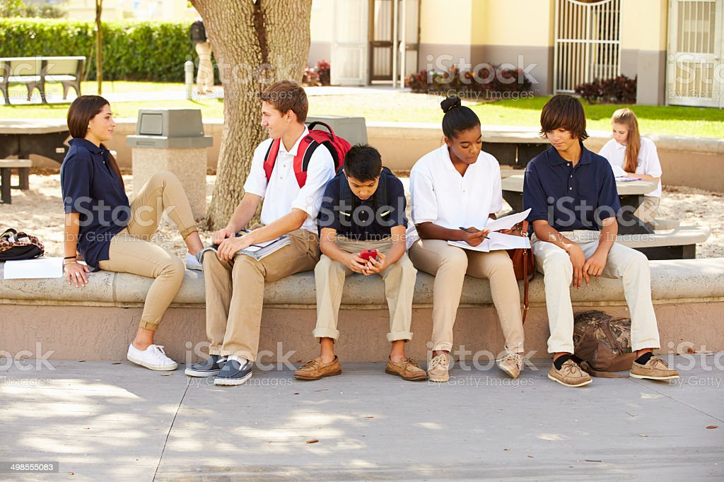 High School Students Hanging Out On School Campus stock photo