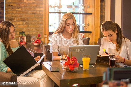 istock High school students with books and laptop studying together in a cafe. 853349754