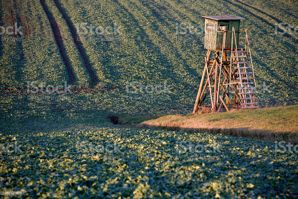 High seat at a field stock photo
