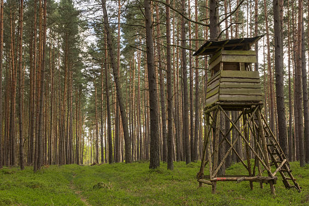 high seat at the edge of a forest high seat at the edge of a forest in Germany hunting blind stock pictures, royalty-free photos & images