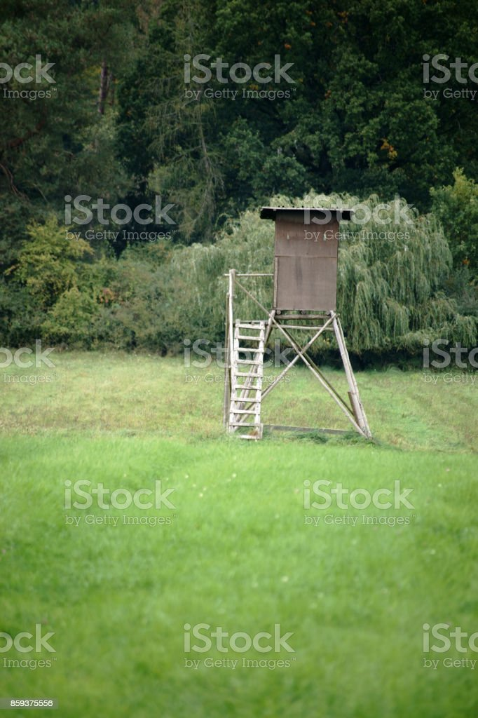 High seat at the edge of the forest stock photo