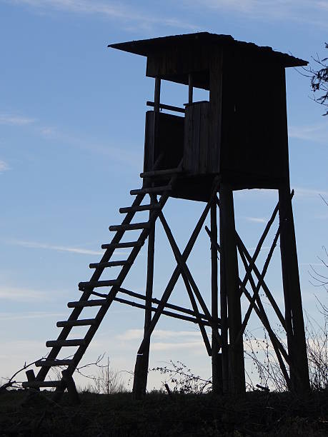High seat silhouette A silhouette of a hunting stand in front of the blue sky. hunting blind stock pictures, royalty-free photos & images
