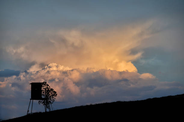 High seat with storm cloud Hochsitz mit dramatischer Gewitterwolke hunting blind stock pictures, royalty-free photos & images
