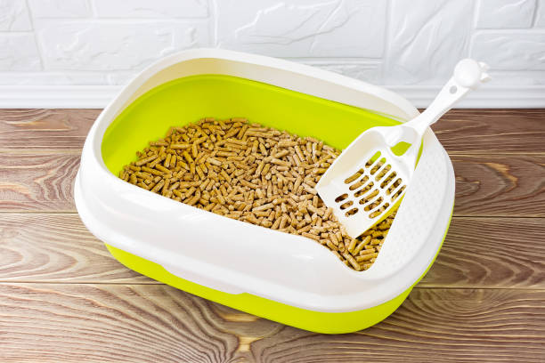 High sided cat litter tray with wooden pellets and scoop on a brown wooden floor. New green cat box near the wall. Toilet for domestic pets. High sided cat litter tray with wooden pellets and scoop on a brown wooden floor. New green cat box near the wall. Toilet for domestic pets. Top view. scooping stock pictures, royalty-free photos & images