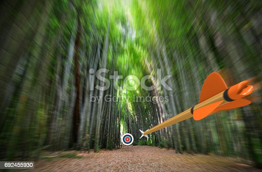 istock High speed arrow flying through blurred bamboo forest with archery target in focus, part photo, part 3D rendering 692455930