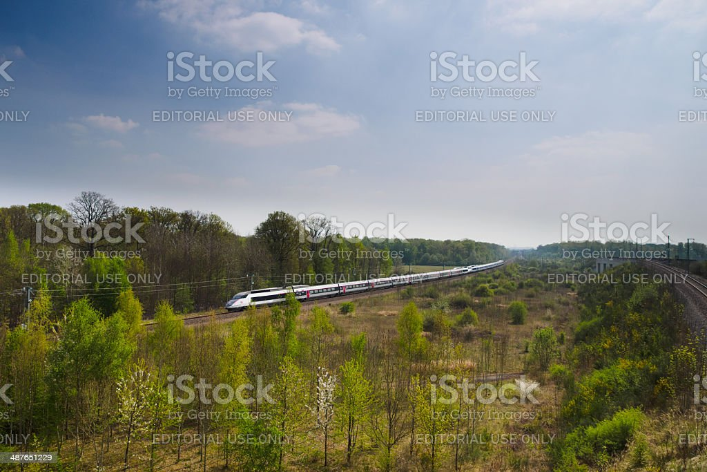 High speed train TGV between forest stock photo