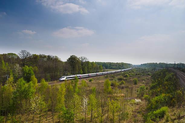 treno ad alta velocità tgv tra foresta - subway foto e immagini stock