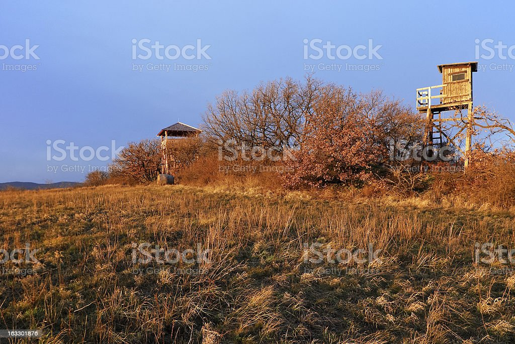 High stand and wooden watchtower close to a meadow stock photo