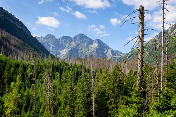 High Tatra Mountains with Mieguszowieckie summits, Poland stock photo