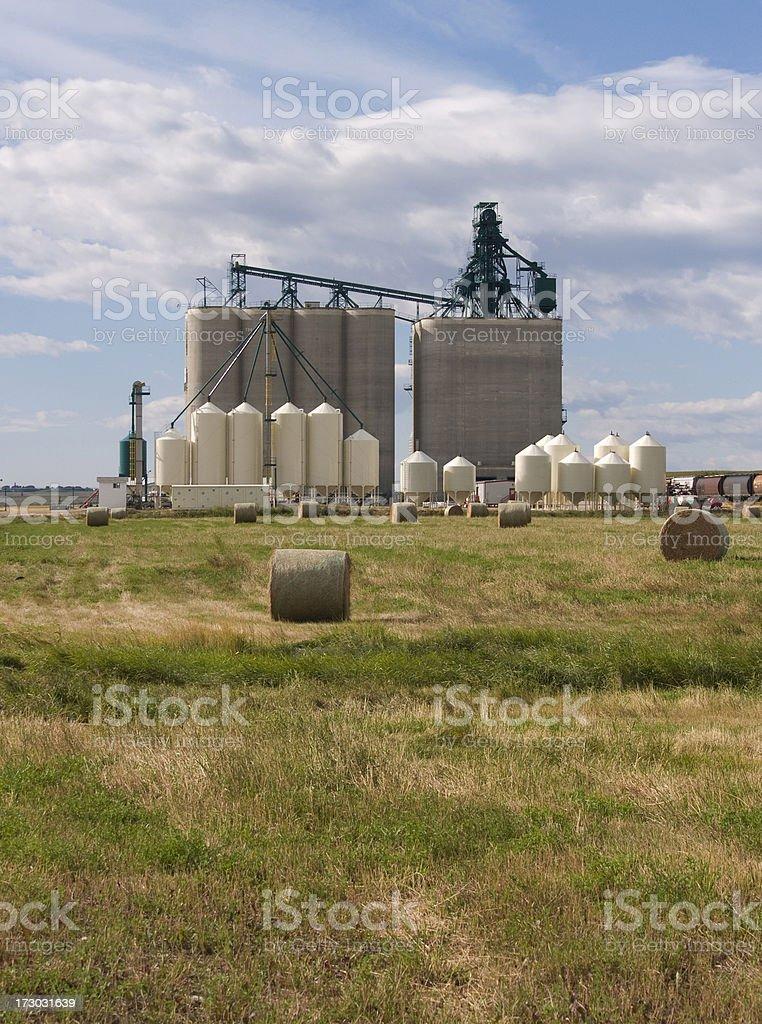 High through-put grain elevator stock photo