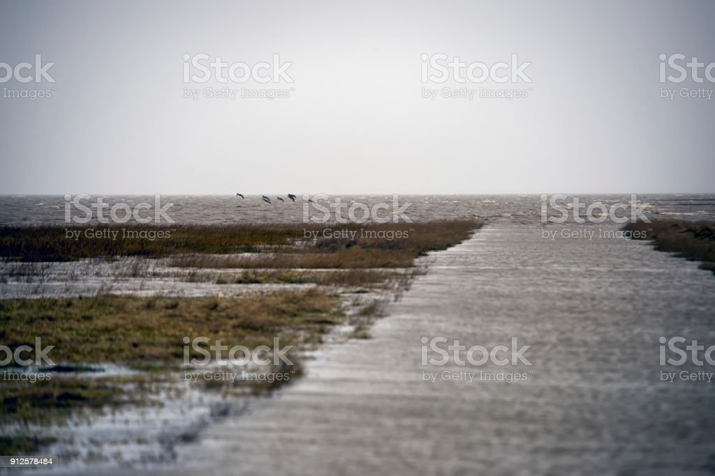 High tide causeway to Mando Island in Denmark. stock photo