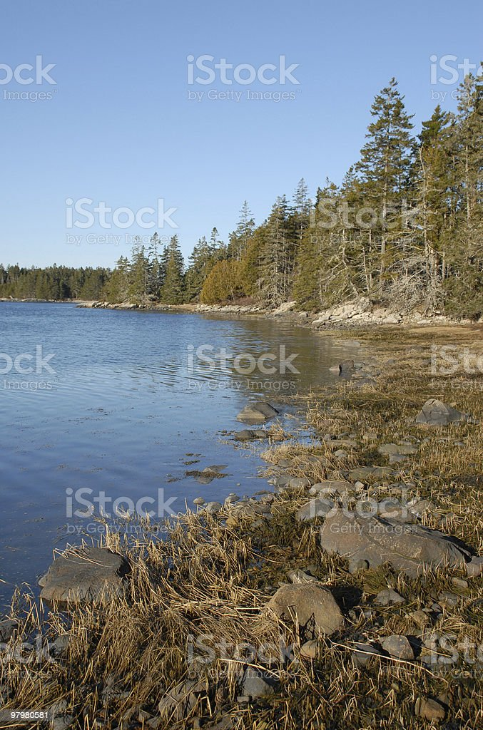 High tide edges into Schoodic Point cove royalty-free stock photo