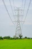 Thailand, Architecture, Biological Process, Built Structure, Cable