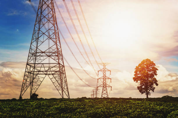 Hochspannungs-Netzteil und Stromleitung mit Sonnenaufgang und Baumhintergrund – Foto