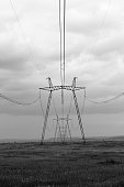Monochrome background of High voltage power lines. Electricity pylons crossing along field.