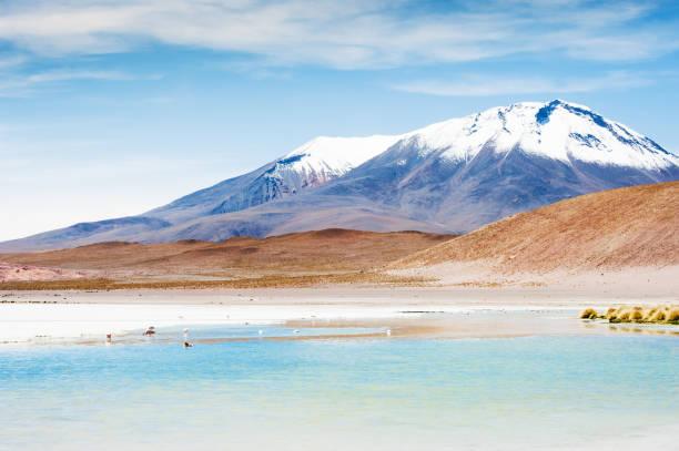 玻利維亞阿爾蒂普拉諾高原上的高空瀉湖 - 阿爾蒂普拉諾山脈 個照片及圖片檔