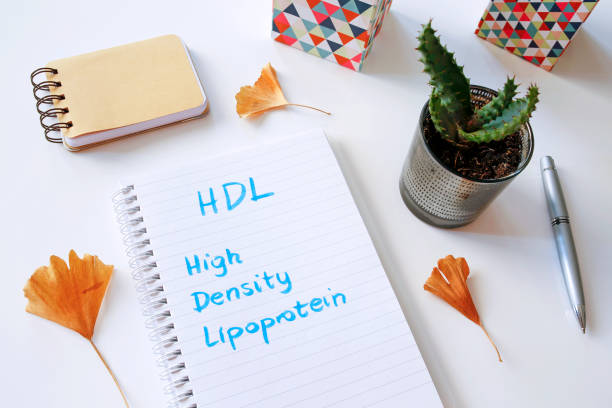 hdl high-density-lipoprotein geschrieben in notebook - arzt zitate stock-fotos und bilder