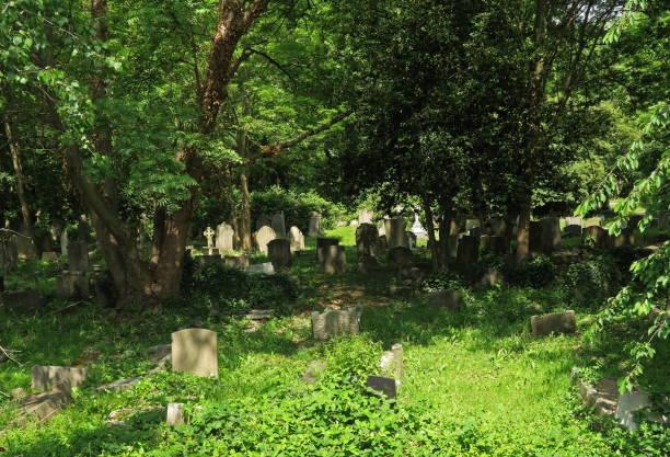 highgate cemetery - waldfriedhof stock-fotos und bilder