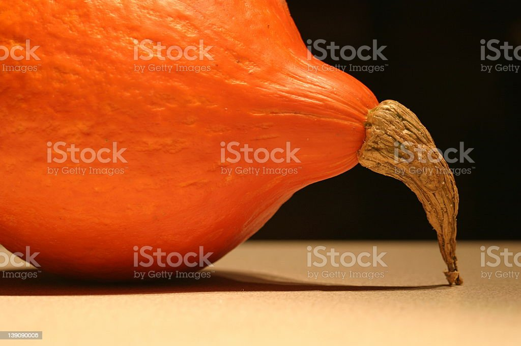 Highheeled Pumpkin royalty-free stock photo