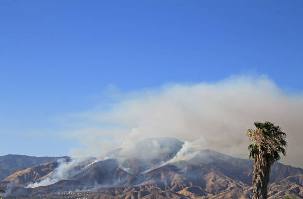 Highland Fire 2 stock photo