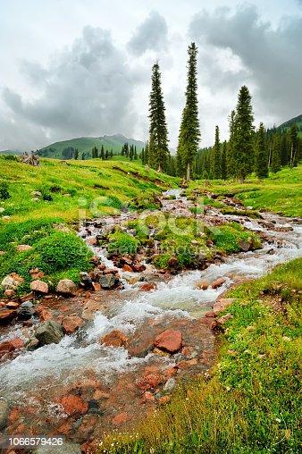 highland pasture in Xinjiang, China