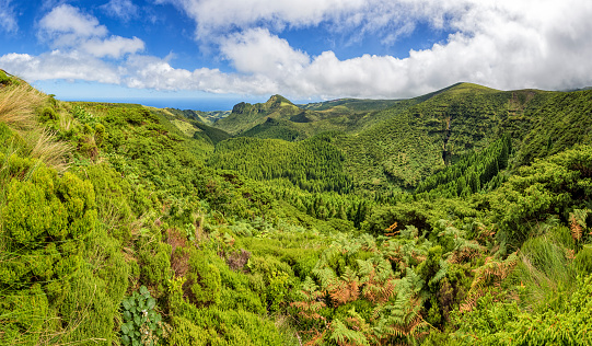 Highlands of Flores Island on Azores / Portugal