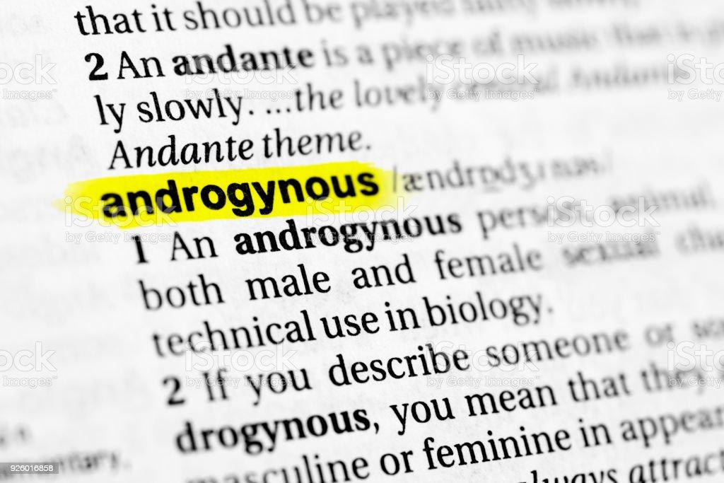 Androgyn definition