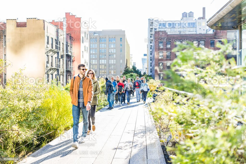 Highline, High Line Boardwalk, Walk, Urban Garden In New York City NYC With
