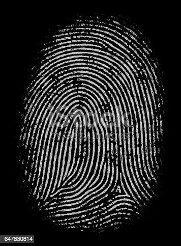803260946 istock photo Highly Detailed Fingerprint 647830814