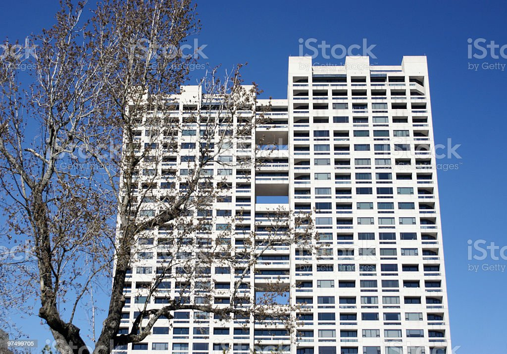 highrise apartment and tall tree royalty-free stock photo
