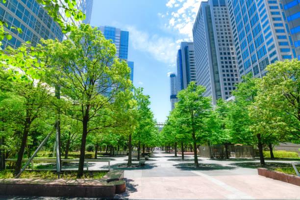 高層ビルと青空品川、東京 - 緑 ビル ストックフォトと画像