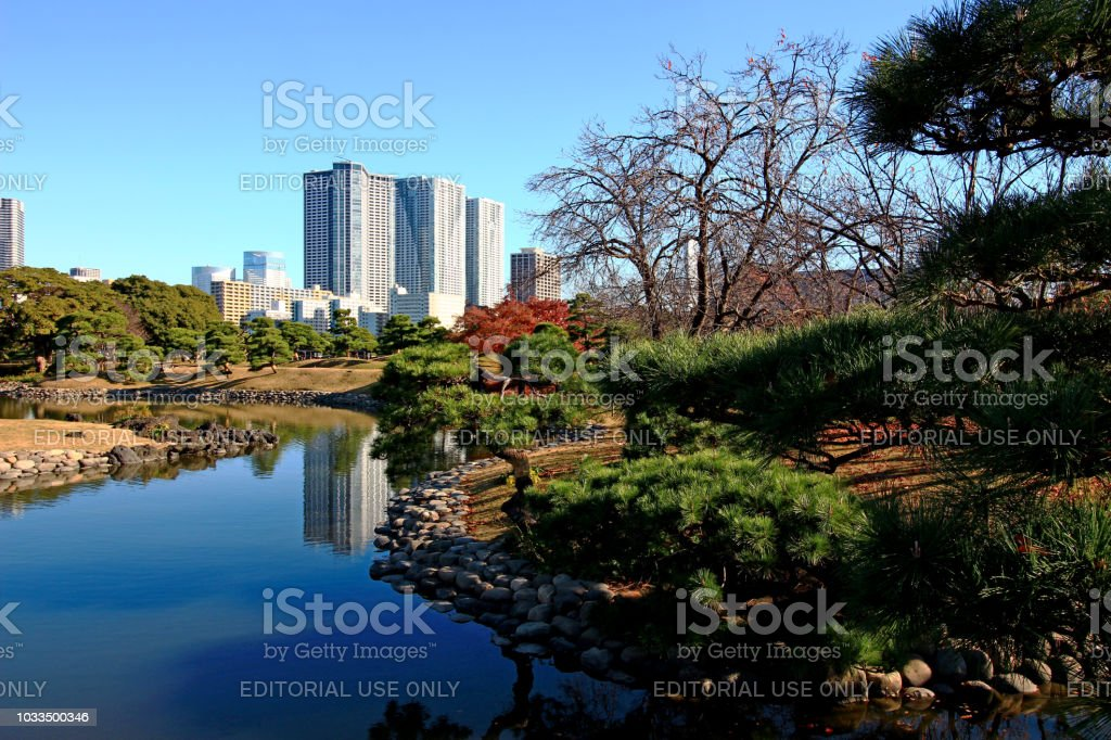 High-rise buildings in Shiodome which can be seen from Hamarikyu Garden stock photo