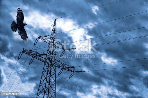 istock High-voltage electric pole with raven before the storm. 826255032