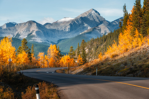 Highway 66 runs through autumn landscape of Kananaskis region in Alberta .