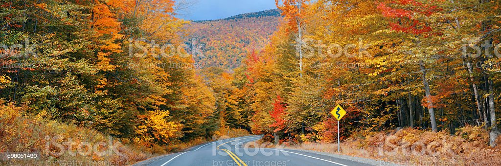 Highway and Autumn forest royalty-free stock photo