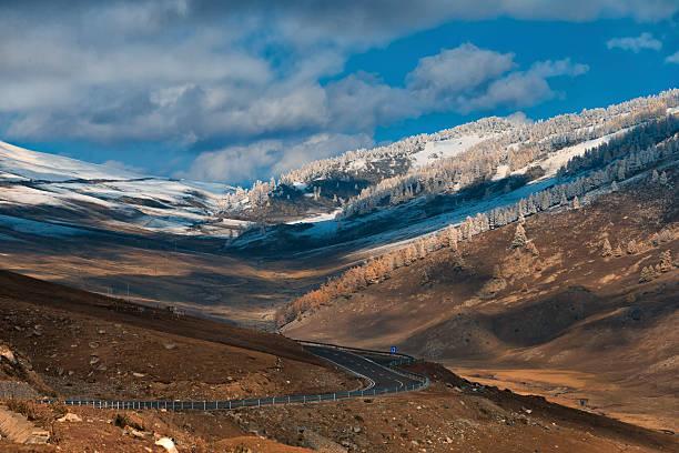 highway and mountain near kanas lake, xinjiang, china - państwowy rezerwat przyrody altay zdjęcia i obrazy z banku zdjęć