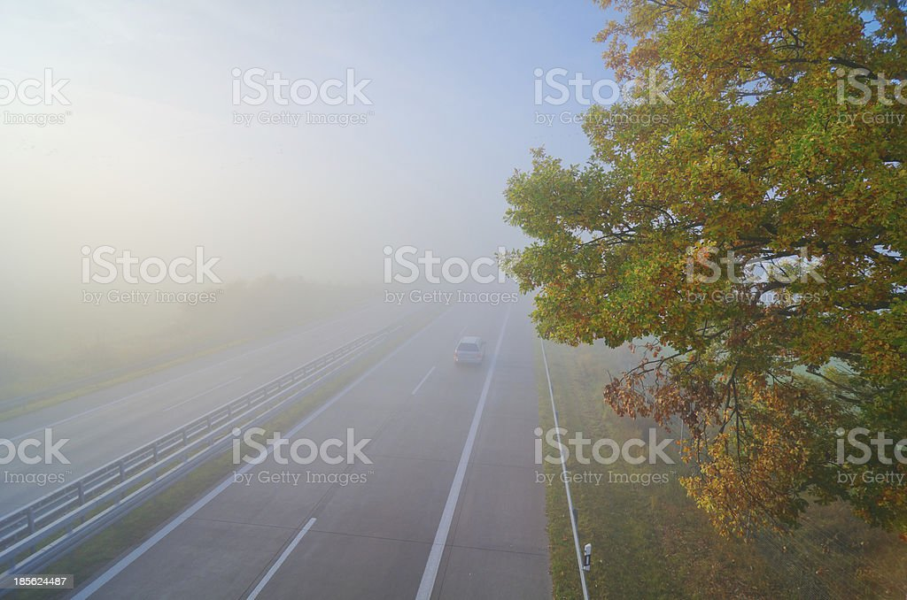 Highway, fall, fog, tree stock photo