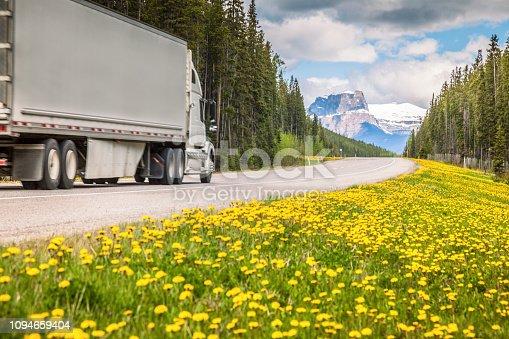 Highway in Jasper National Park.  Alberta, Canada.