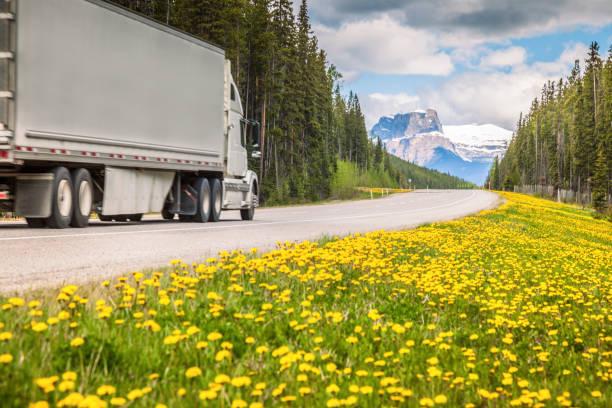 Autobahn im Jasper Nationalpark – Foto